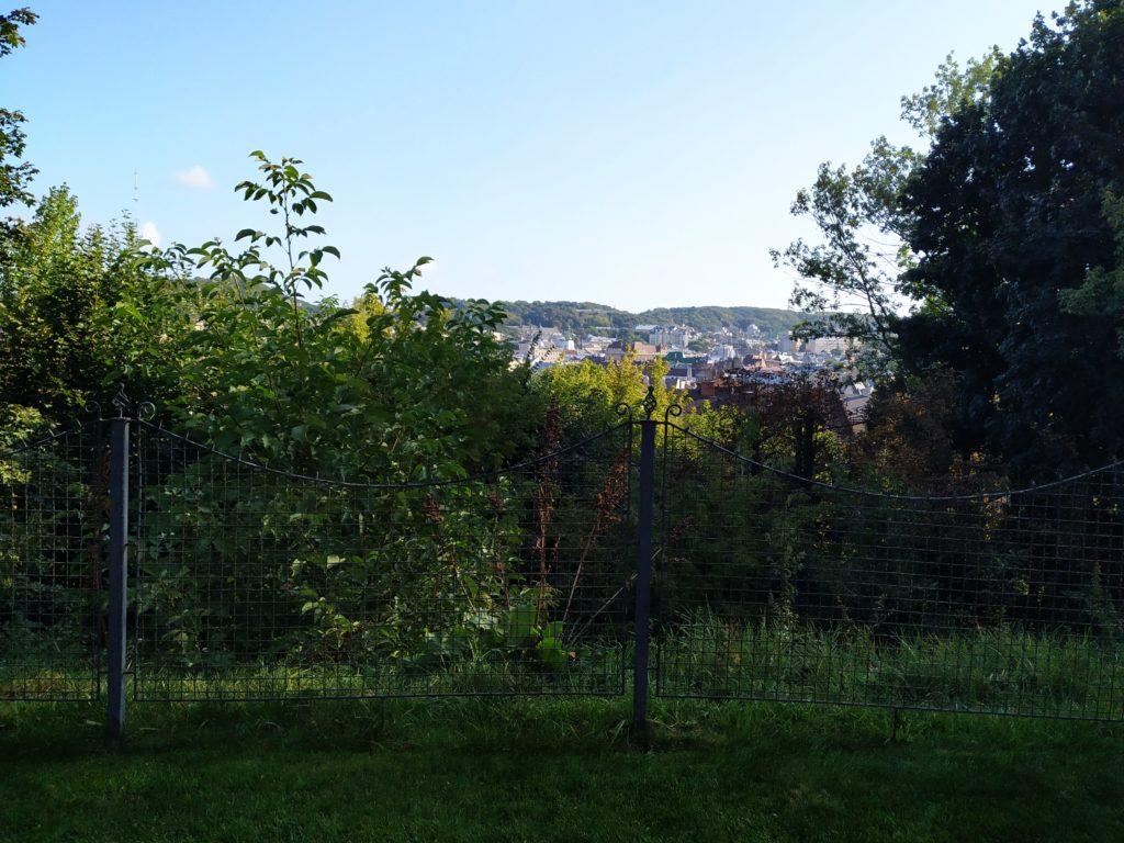 Výhled z  Citadell In, Lvov