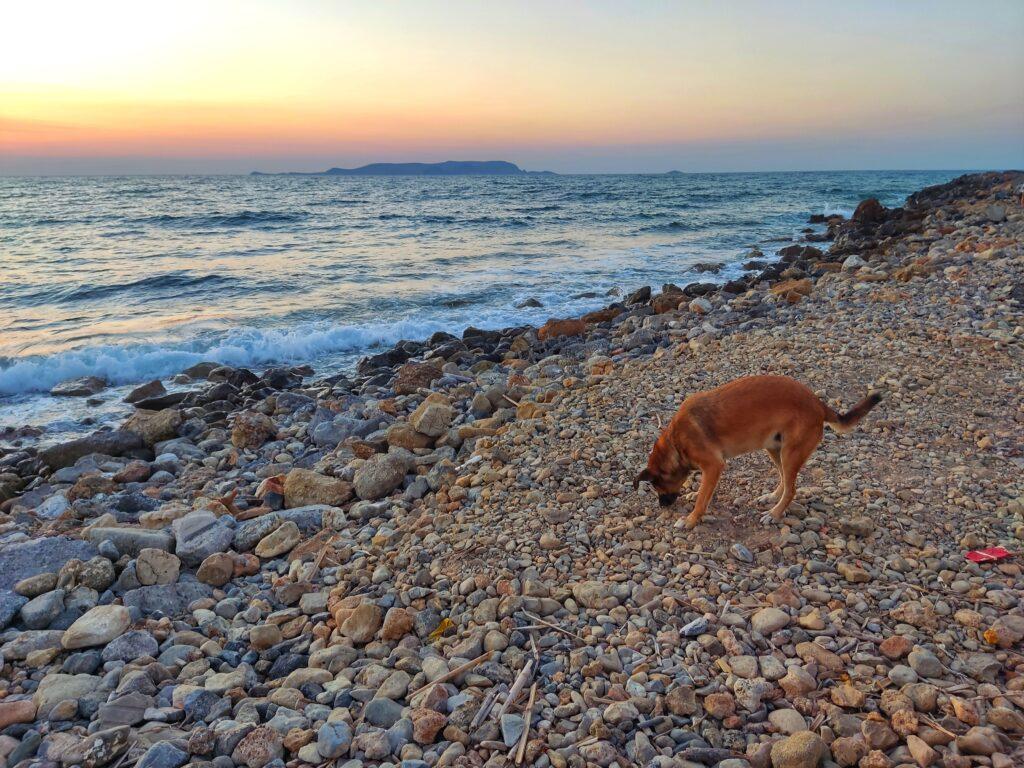 Gouves, Kréta, Řecko